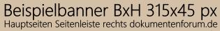 Beispielbanner_Seitenleiste_rechts315x45px.png